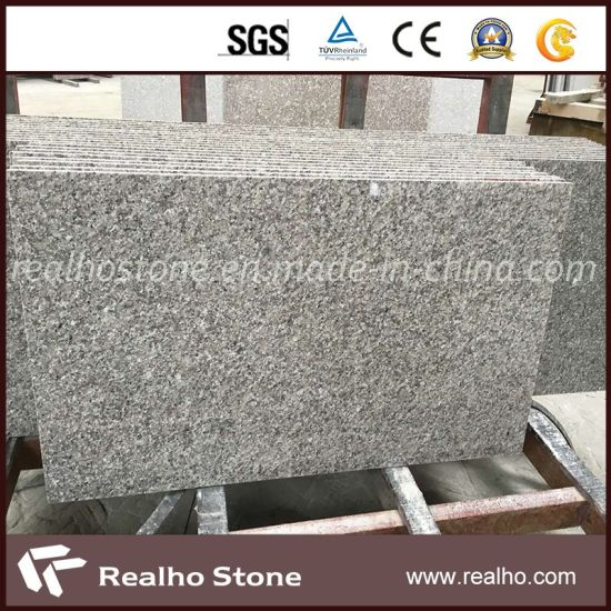Construction Stone Slab/Tiles Price Grey Granite City pictures & photos
