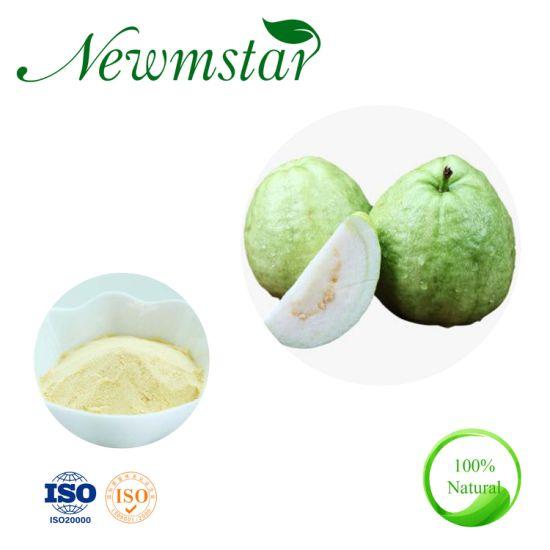 Top Quality Natural Guava Extract, Guava Leaf Extract Powder, Psidium Guajava L
