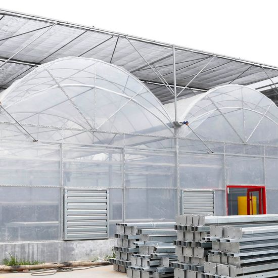 Customized Agricultural Plastic PE Film Greenhouse for Vegetables Flowers