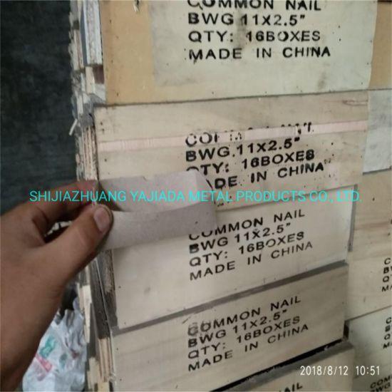 Wood Nails for Kuwait Market