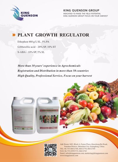 King Quenson Crop Protection Products List Plant Growth Hormone pictures & photos