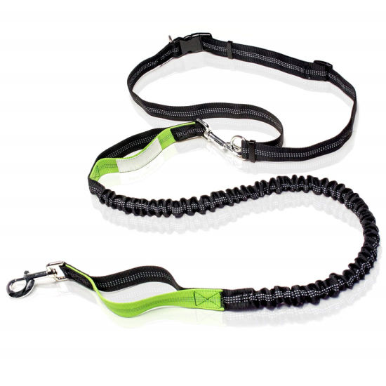 Retractable Hands Free Dog Leash – Dual Handle Bungee Waist Leash for up to 150 Lbs Large Dogsby Paw Lifestyles