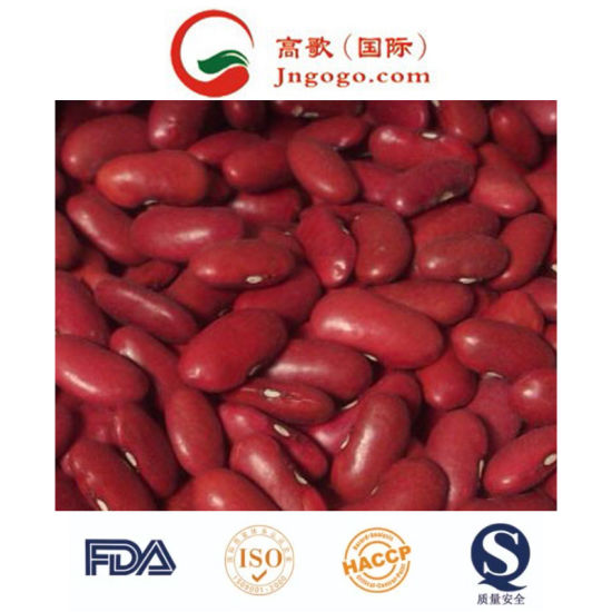 Top Quality About Long Ship Red Bean pictures & photos