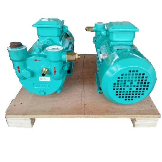 2BV2 060 Liquid Ring Vacuum Pump for Plastic Extrusion Line