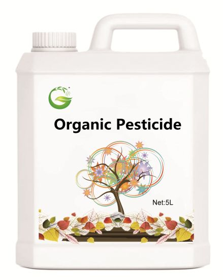 High Effectively Organic Matrine Insecticide for Kill Aphid/Whitefly/Rice Planthopper pictures & photos