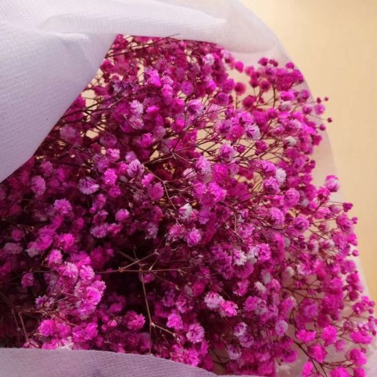High Quality Natural Preserved Baby′s Breath Bouquet for Wedding Decoration pictures & photos