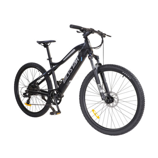 29 Inch Ebike29 Inch Electric Bicycle29 Inch Electric Bike Full Suspension
