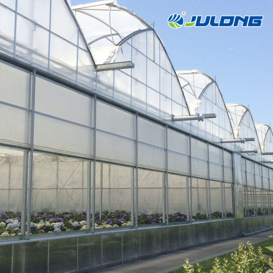 Low Cost Agricultural Multi Span Agricultural Film Hydroponics Irrigation System Plastic Film Greenhouse Price