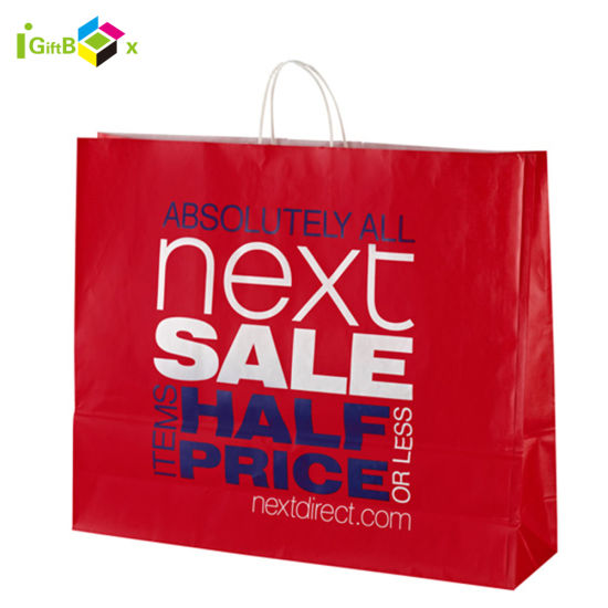 Custom Printed Paper Shopping Bags for Packaging