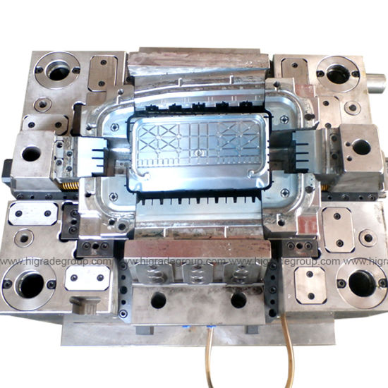 Injection/Plastic Mould/Injection Molding/Mould