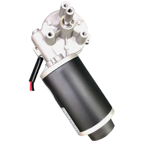 DC 12V Worm Gear Motor 200rpm Electric Motors for Sale