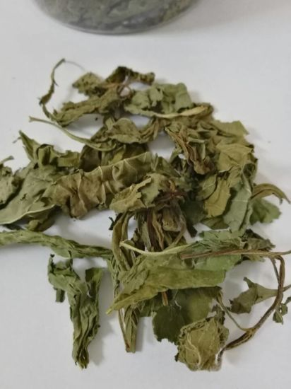 Organic Health Herbal Flower Tea Dried Mint Leaf Tea pictures & photos