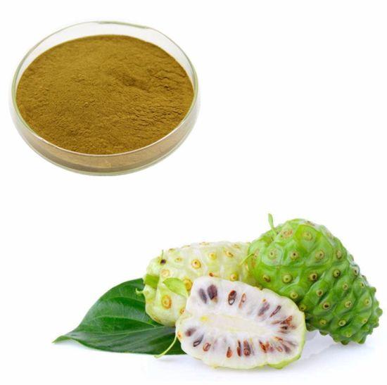 Top Quality Spray Dried Noni Fruit Juice Powder