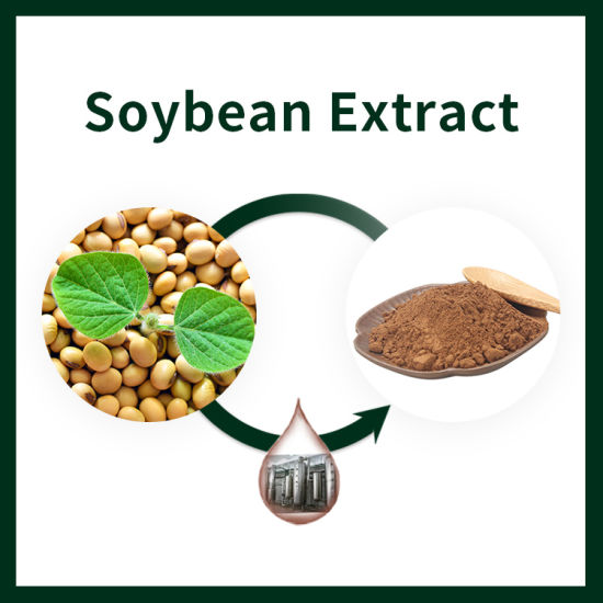 ISO HACCP Certified Plant Extract Soybean Isoflavone Extract Powder
