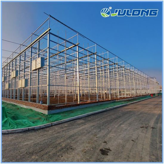 Agricultural Smart Farm Multi-Span Glass Greenhouse Tomatoes Hydroponics Greenhouse for Sale