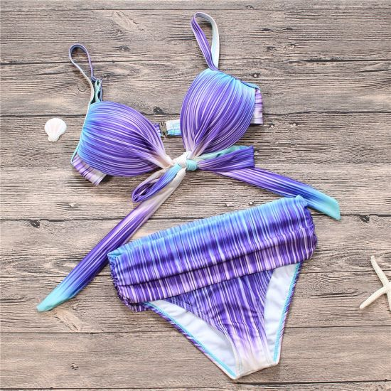 Women′s Sexy Purple Stripe Two Piece High-Waisted Bikini Beachwear Swimsuit pictures & photos