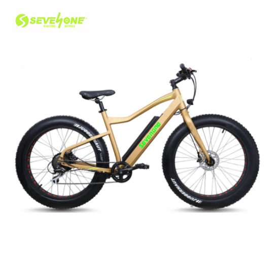 Wholesale 26 Inch Fat Tire Electric Bike 48V 500W MID Motor with Lithium Battery for Sales pictures & photos