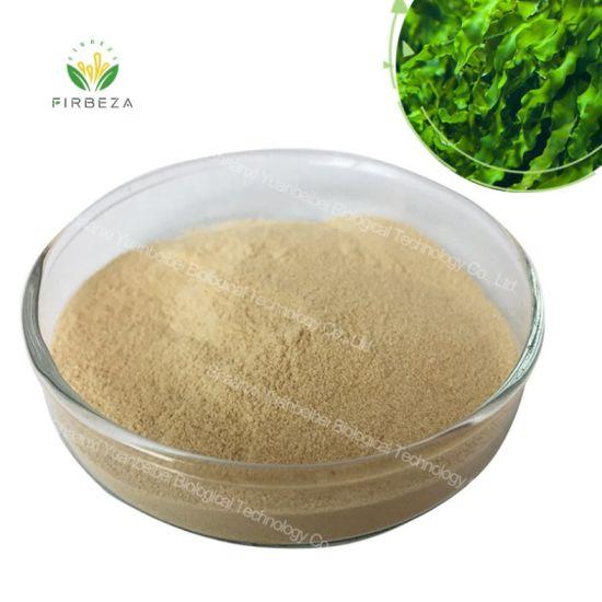 High Quality Health Food Seaweed Extract 5%-95% Fucoidan Powder