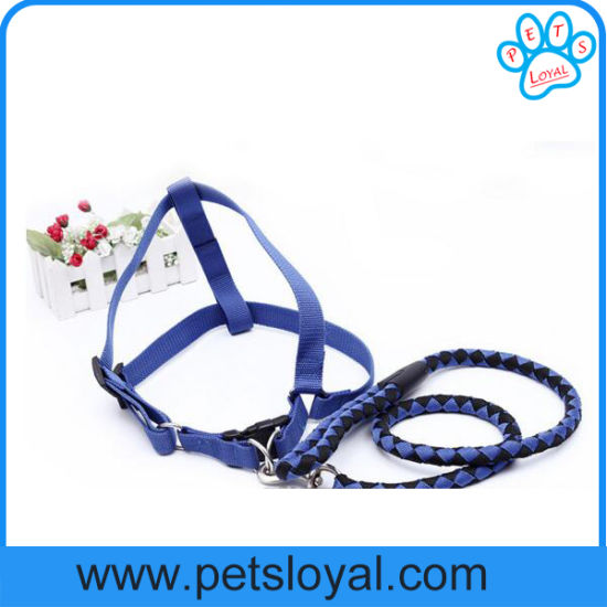 Amazon Ebay Hot Sale Nylon Pet Dog Harness Leash pictures & photos