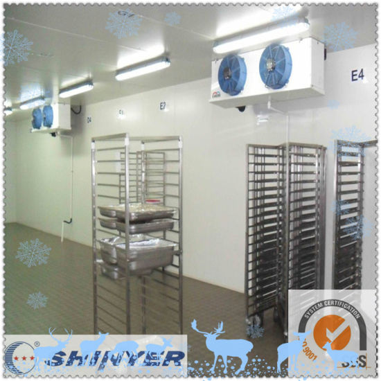 Shinyer Freezer Room for Chicken and Fish pictures & photos