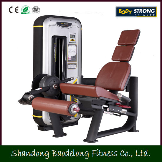 China Gym Bodybuilding Fitness Equipmeng Leg Extension