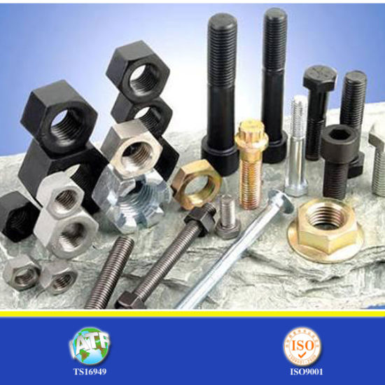 China Bolt and Nut at Best Price pictures & photos