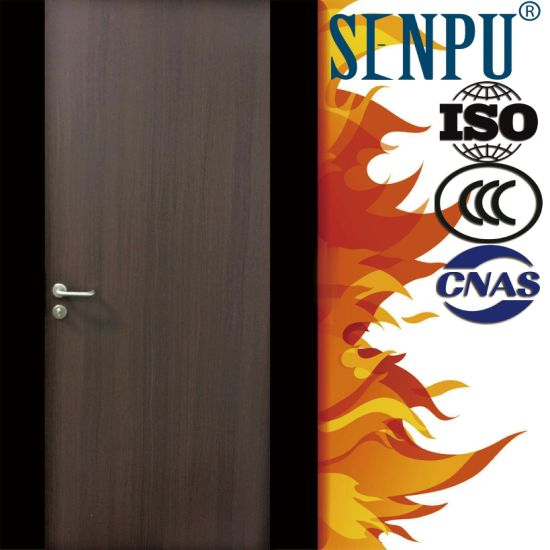 Wood Grain Steel Fire Door-B pictures & photos