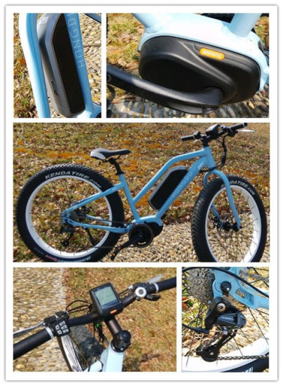 2016 Powerful Fat Mountain Ebike with MID Drive Motor pictures & photos