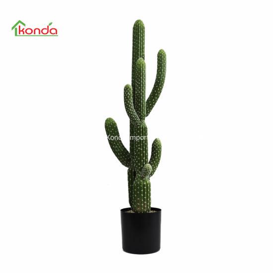 Wholesale Desert Bonsai Plant Landscape PE Artificial Cactus Plant
