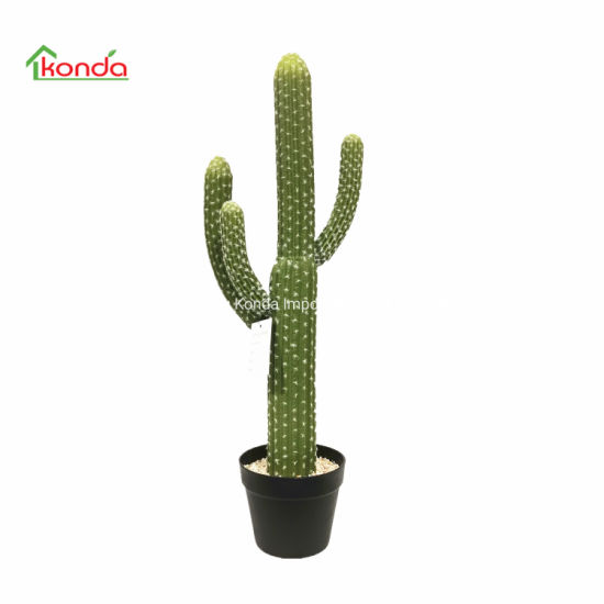 Garden Decoration Succulent Artificial Cactus