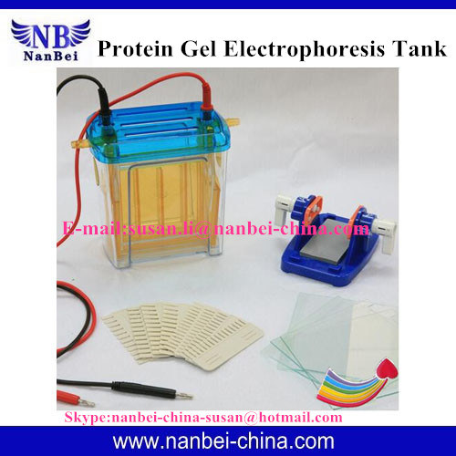 DNA Sequencing Electrophoresis Cell with Reliable Quality pictures & photos
