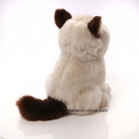 c529abdf5236 China Wholesale Custom Plush Stuffed Animal Soft Kids Toy Cat ...