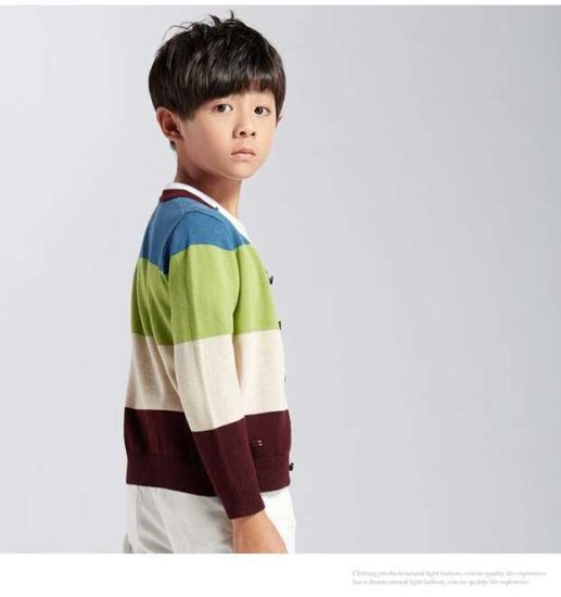 Boy′s Cotton & Fashion Long Sleeved Sweater pictures & photos