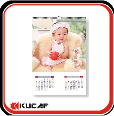 Artpaper Paper Wall Calendars pictures & photos