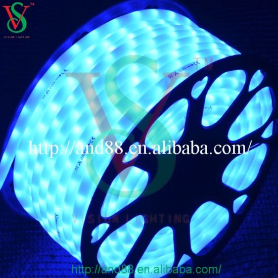 10mm 24v Blue Christmas Led Rope Lights Pictures Photos