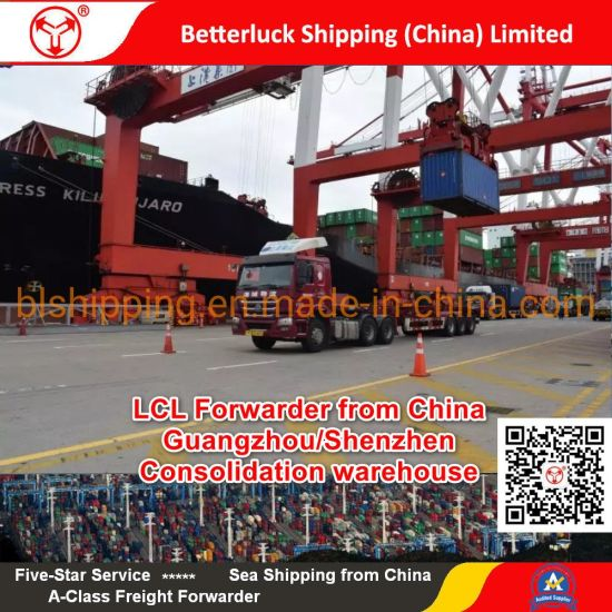 LCL Forwarder from China/Guangzhou/Shenzhen to Sydney/Australia Sea Freight agent pictures & photos