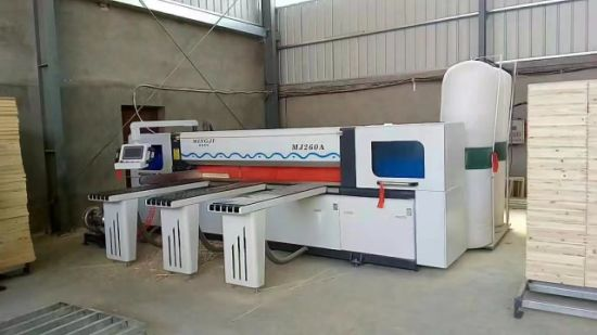 CNC Panel Saw Machine Cutting Machine for Woodworking pictures & photos