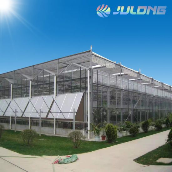 Durable Venlo Type Multi-Span Glass Greenhouse for Planting Vegetables and Fruits From China