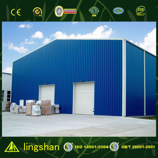 Low Cost Modern Warehouse (LS-FV-06G) pictures & photos
