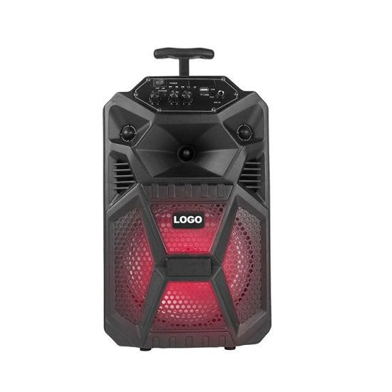 8 Inch 30W Portable Wireless Rechargeable Speaker Bluetooth/FM/USD/TF OEM Guangzhou PA Speaker