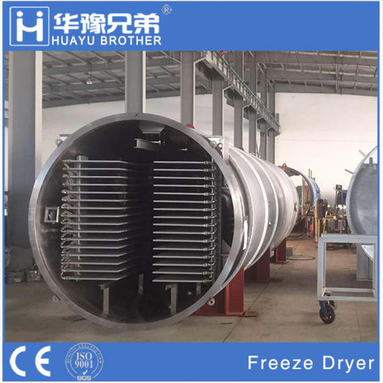 New Technology 30% Power Saving Freeze Drying Equipment