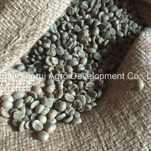 Yunnan Green Coffee Beans Unroasted