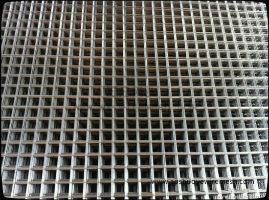 Welded Wire Mesh Panel for Fencing pictures & photos