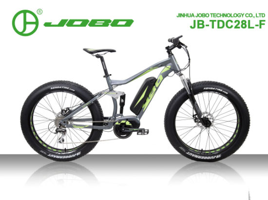 Jb-Tdc28L-F Dual Suspension 8 Speed Fat Tire Mountain Bike with Bafang 36V 48V 350W Middle Motor