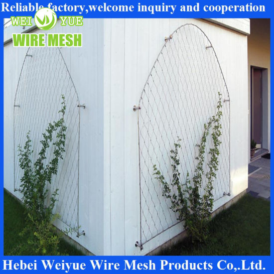 Wholesale Stainless Steel Wire Rope Metal Mesh for Green Wall