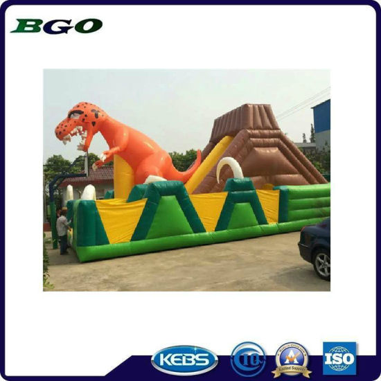 PVC Tarpaulin Inflatables Bouncy Slides Toys pictures & photos