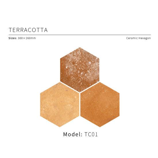 Terracotta Glazed Hexagon Ceramic Tile 300X260mm (TC 01)