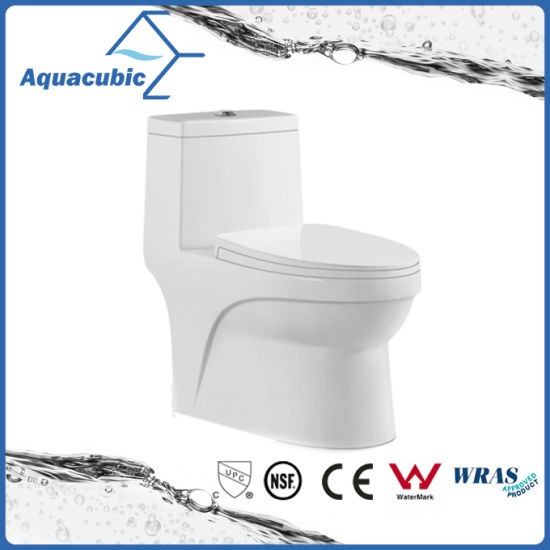 One Piece Dual Flush Ceramic Round Front Bowl Toilet Act7005