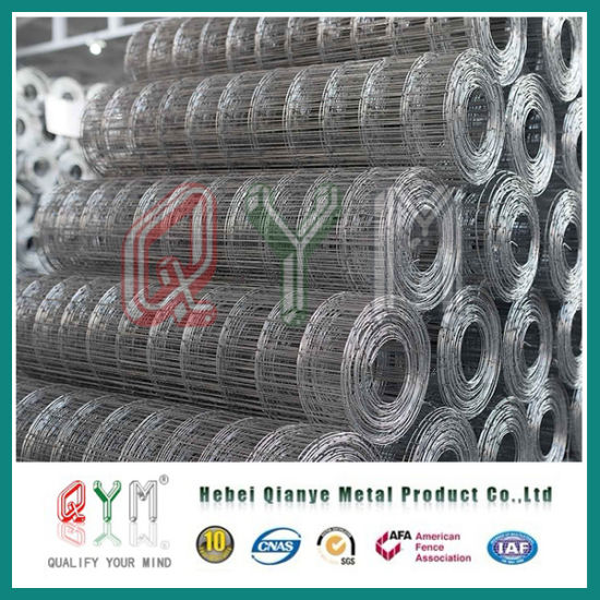 China PVC Coated Galvanized Rabbit Cage Welded Wire Mesh