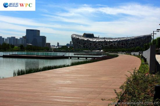 Long Life High Quality Outdoor Hollow WPC Flooring